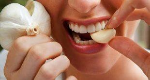 صورة معالجة الم الاسنان , طريقه فعاله لوجع الاسنان Garlic 310x165