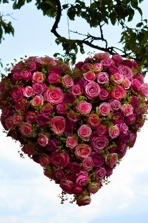 صورة صور ورد قلب , هديه رومانسيه روووعه لحبيبك 3485 2