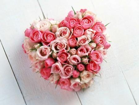 صورة صور ورد قلب , هديه رومانسيه روووعه لحبيبك 3485 6