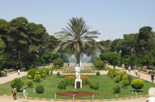 صور تعبير عن الحديقة , فائدة المساحة الخضراء للانسان