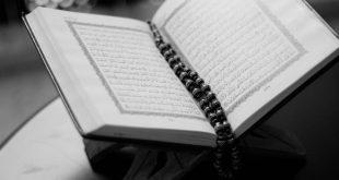 صور اجمل اصوات القراء السعوديين , اصوات نزلت من السماء