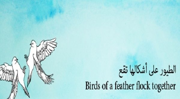 صور الطيور على اشكالها تقع بالانجليزي , امثال بالانجليزيه مترجمه