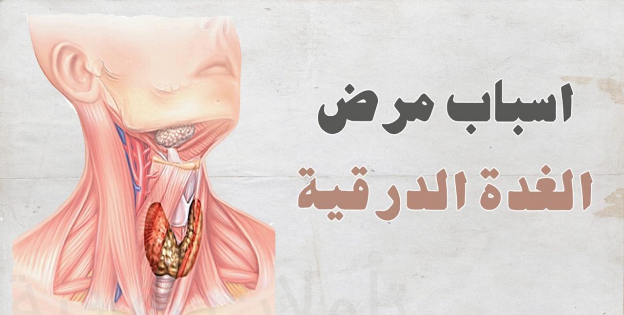 صورة صور الغدة الدرقية , لن تصدق شكل الغدة الدرقية سبحان الله 1666 5