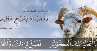 صورة حكم الاضحية في عيد الاضحى , الاعياد الاساسيه عند المسلمين