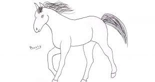 صورة رسمة حصان للاطفال , علمي طفلك يرسم حصان بسهولة