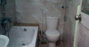 صورة طريقة تنظيف الحمام الافرنجي , اقضي على قاذورات الحمام بسهولة