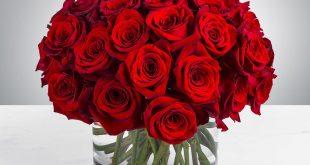 صورة صور ورود جميلة جدا , مشوفتش اروع من الورود دي تجنن