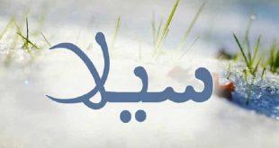 معنى اسم سيلا في الاسلام , اسماء مميزة جدا