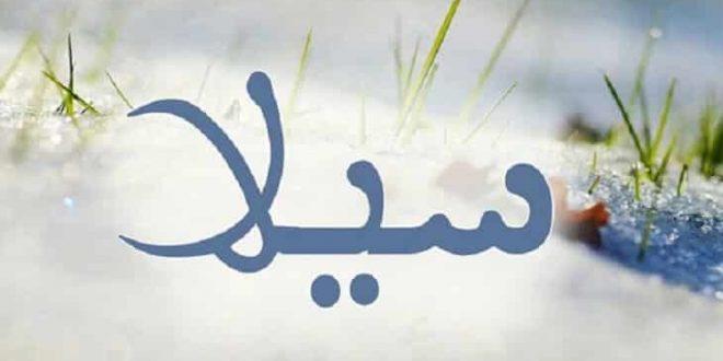 صورة معنى اسم سيلا في الاسلام , اسماء مميزة جدا