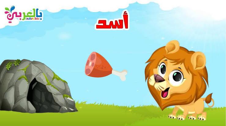 صورة معلومات عن الاسد للاطفال , كل ما يجب معرفته عن ملك الغابه