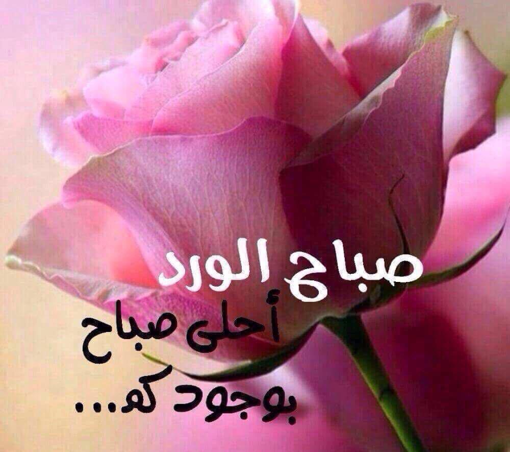 صورة صباح الخير يا احلى , اجمل صباح ده ولا ايه 6101 3