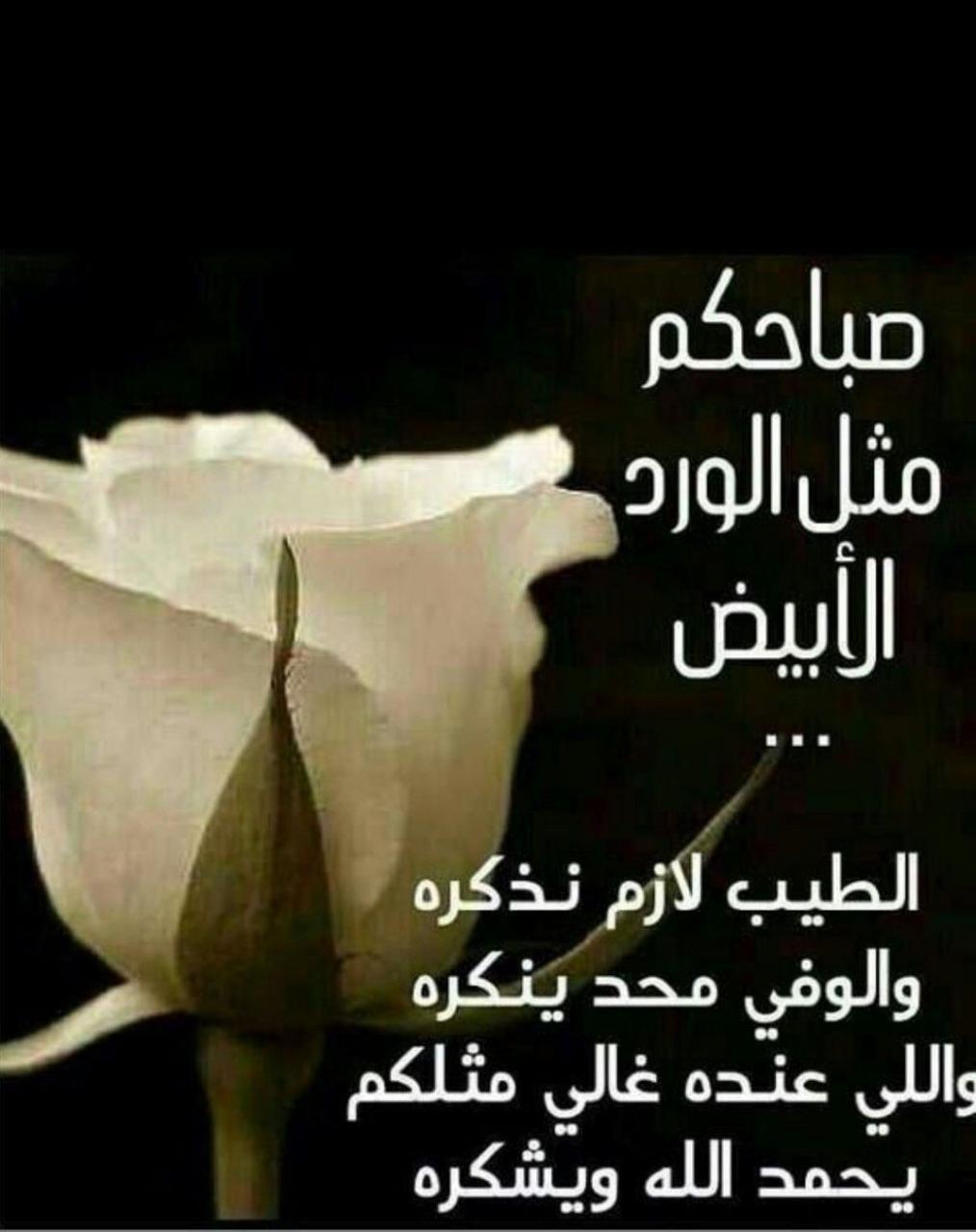 صورة صباح الخير يا احلى , اجمل صباح ده ولا ايه 6101 4