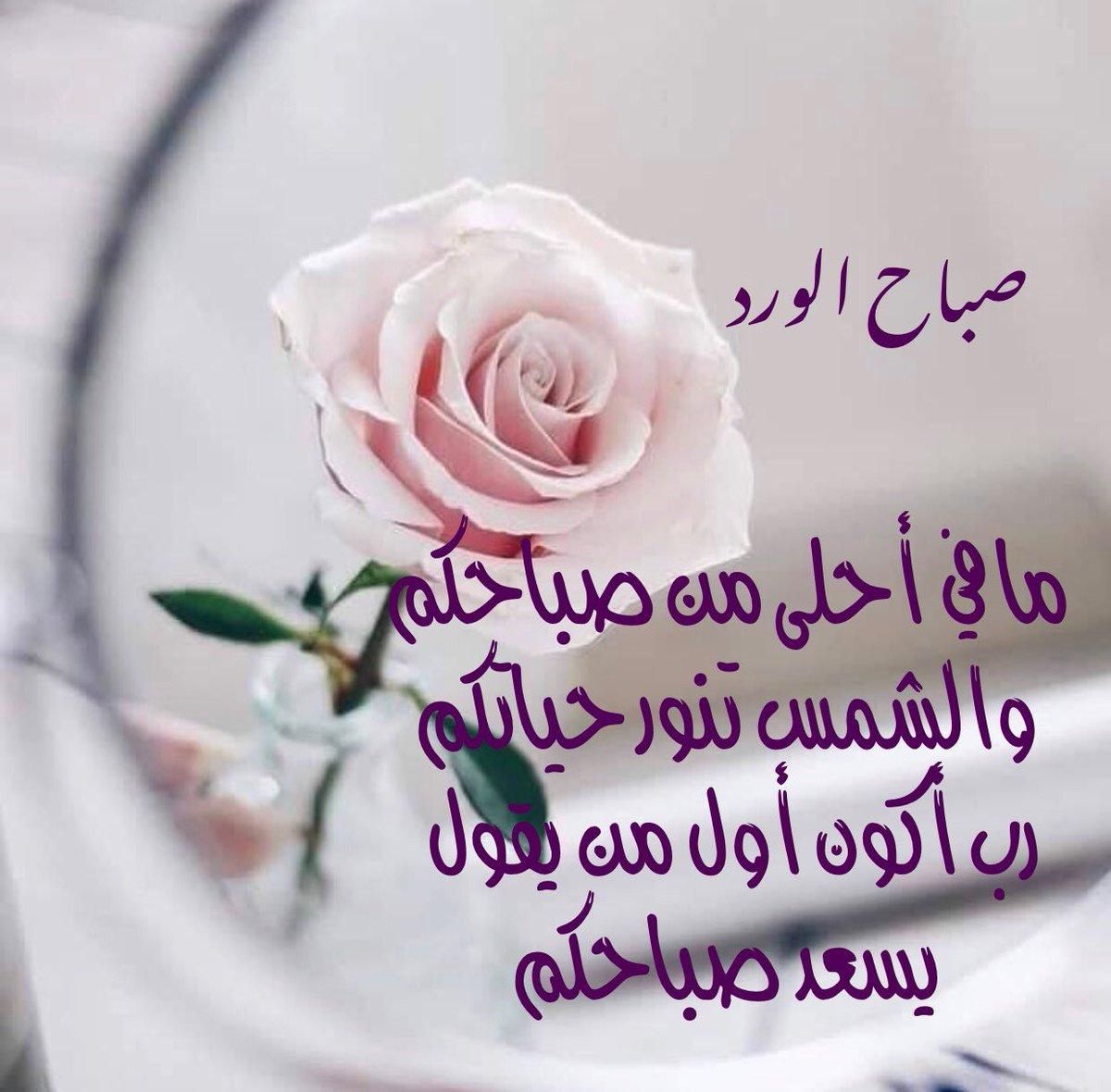 صورة صباح الخير يا احلى , اجمل صباح ده ولا ايه 6101 5