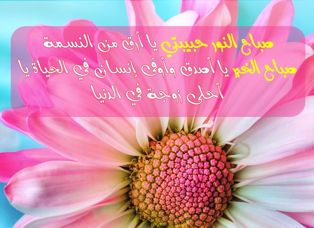 صورة صباح الخير يا احلى , اجمل صباح ده ولا ايه 6101
