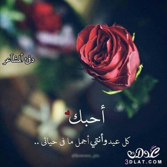 مجموعة صور لل رسائل عيد اضحى مبارك للحبيب