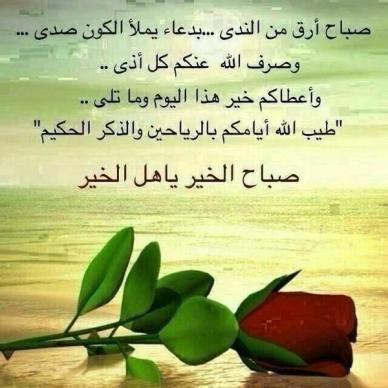 حكمة صباح الخير كلمات صاحبة جميلة جدا غرور وكبرياء