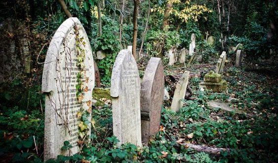 صورة تفسير رؤية المقبرة , المقابر في الروئ و الاحلام