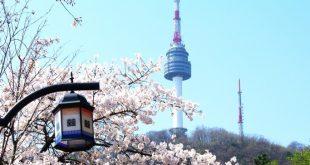 صورة معلومات عن كوريا الجنوبية , ماذا تعرف عن كوريا الجنوبية ؟