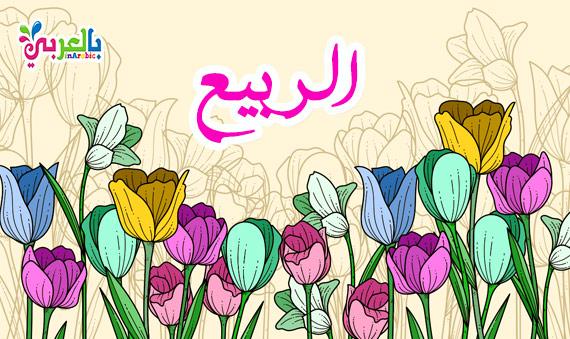 صورة تعبير عن الربيع, اجمل مواسم السنة فصل تتفتح فيه الزهور
