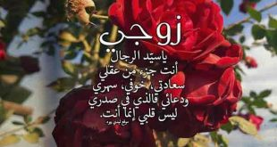 صورة شعر مدح الزوج, عايزة كام كلمة حلوة عشان امدح زوجي