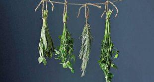 صورة تنظيف الرحم بالاعشاب , كيف تنظفين الرحم بالاعشاب الطبيعية