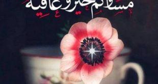 صورة توبيكات مساء الخير , عبارات جميلة عن مساء الورد