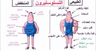 صورة نقص هرمون التستوستيرون عند الرجال، يهم كل الرجال