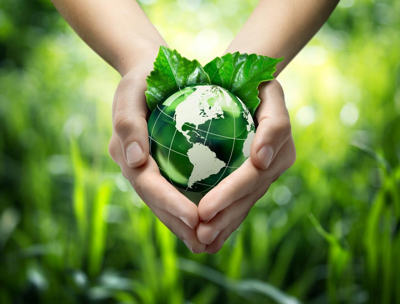 صورة بحث عن البيئة وكيفية الحفاظ عليها، لا بد أن نحافظ عليها